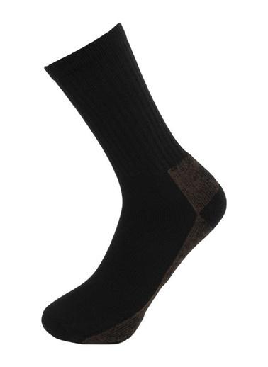 Panthzer  Coolmax Sport Çorap Kahverengi/Gri Renkli